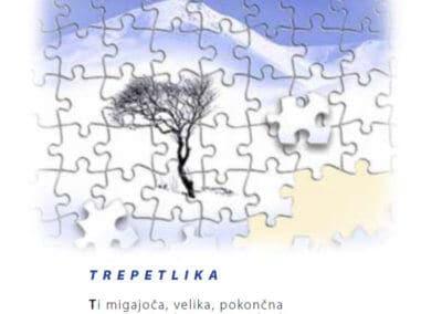 Trepetlika – številka 20 (december 2007)