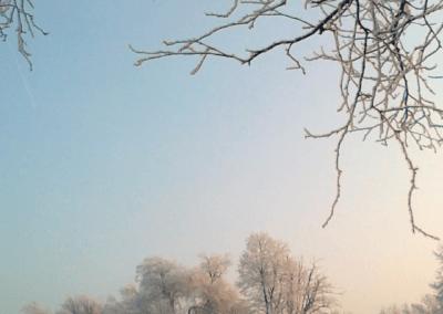 Trepetlika – številka 25 (marec 2011)