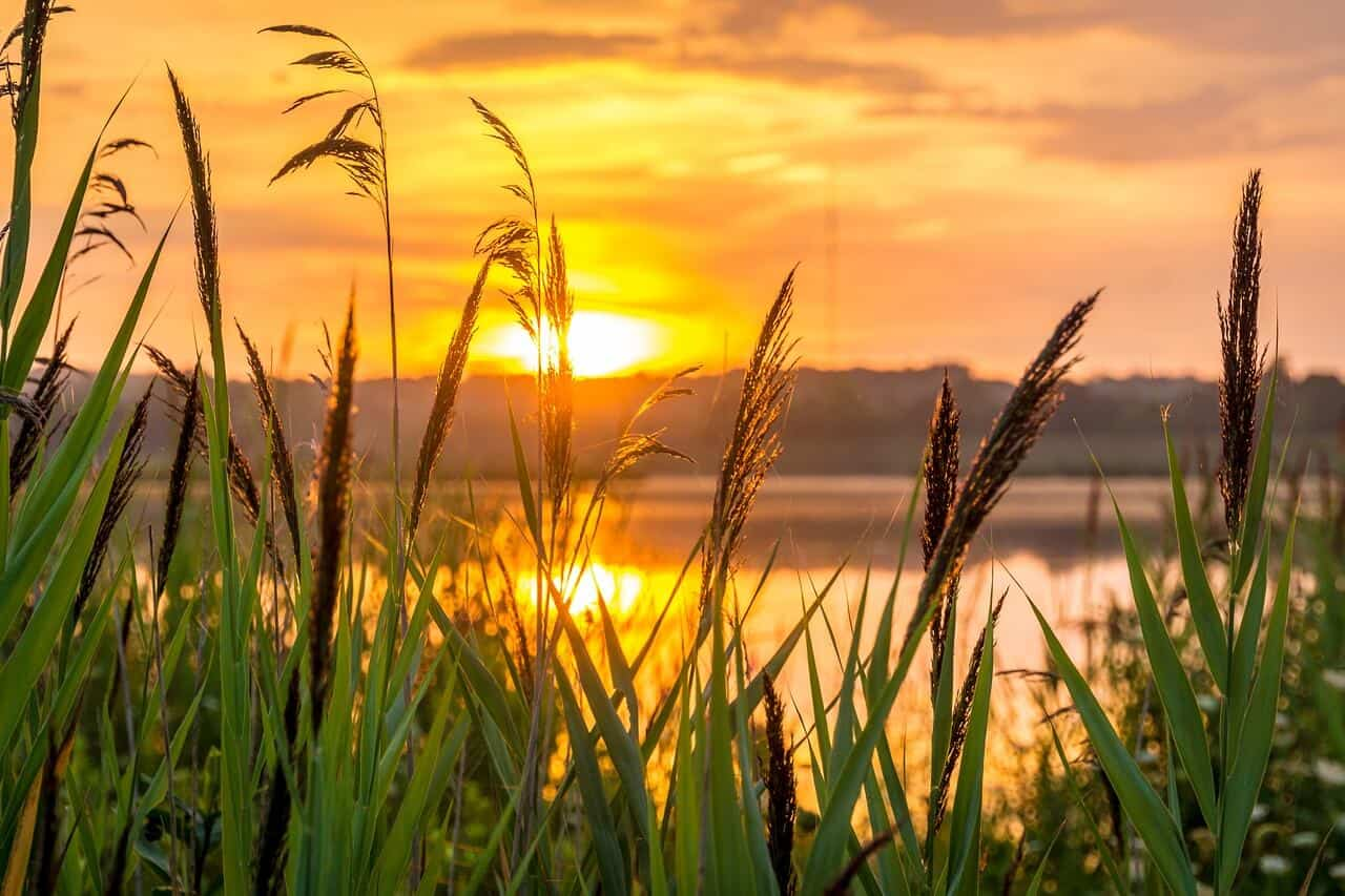 soncni vzhod