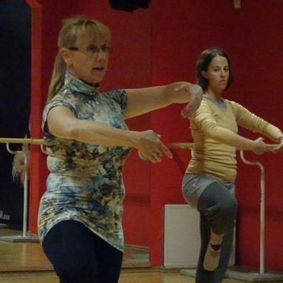 Plesna delavnica- SPLET